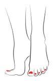 Женские ноги Стоковое Изображение RF