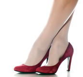 Женские ноги Стоковое Изображение