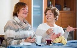 Женские пенсионеры смотря телевизионный канал и выпивая чай стоковые изображения