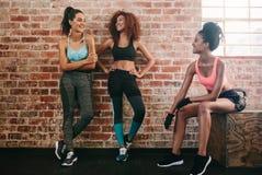Женские друзья принимая остатки после разминки фитнеса Стоковые Изображения