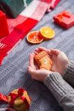Женские руки в сером цвете связали пряник свитера застекленный удерживанием Стоковая Фотография