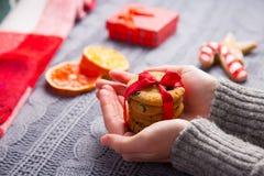 Женские руки в сером цвете связали свитер держа печенье шоколада дальше Стоковые Изображения