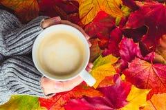 Женские руки в теплом свитере держат чашку кофе на backgro Стоковые Изображения