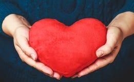 Женские руки давая красное сердце Молодая женщина в связанном свитере держа мягкое сердце стоковое фото rf