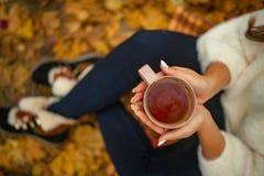 Женские руки держат чашку горячего чая на вылазке в осени конец вверх стоковое фото rf