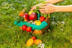 Женские руки держа плетеную корзину с овощами и плодами, концом вверх стоковое изображение rf