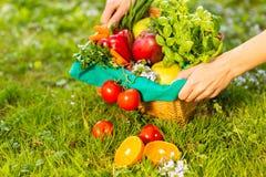 Женские руки держа плетеную корзину с овощами и плодами, концом вверх стоковая фотография