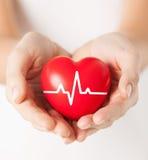 Женские руки держа сердце с линией ecg Стоковая Фотография