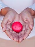 Женские руки держа французские macaroons Стоковое Изображение