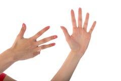 Женские руки показывая 9 перстов изолированных на белизне Стоковая Фотография