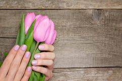 Женские руки при розовые ногти держа розовые тюльпаны стоковая фотография