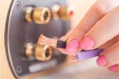 Женские руки с кабелем для дикторов Bi-Amp Стоковые Изображения