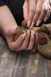 Женские руки с красивым пышным маникюром переносят каштаны от linen сумки на деревянных досках Стоковое фото RF