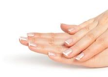 Женские руки с французским manicure Стоковые Изображения