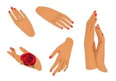 Женские руки Стоковые Изображения