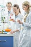 Женские ученые в лаборатории Стоковое Изображение RF
