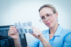Женский дантист смотря рентгеновский снимок Стоковые Изображения