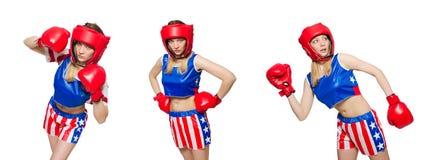 Женский боксер изолированный на белой предпосылке Стоковые Фотографии RF