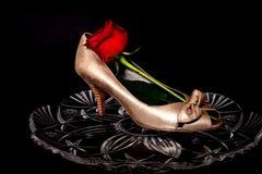 Женский ботинок и поднял Стоковая Фотография