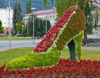 Женский ботинок сделанный из цветков Стоковые Изображения RF