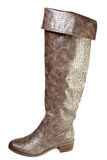 Женский ботинок jack Стоковое Изображение RF