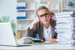 Женский бухгалтер босса коммерсантки работая в офисе Стоковые Фото