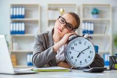 Женский бухгалтер босса коммерсантки работая в офисе Стоковые Фотографии RF