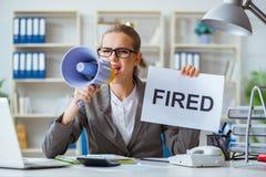 Женский бухгалтер босса коммерсантки работая в офисе Стоковая Фотография