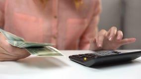Женский бухгалтер считая банкноты доллара, семейный бюджет планирования домохозяйки видеоматериал