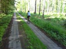 Женский велосипедист трека в древесинах Стоковое Изображение RF