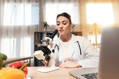 Женский доктор сидя на столе в офисе с микроскопом и стетоскопом Женщина смотрит в микроскопе стоковая фотография