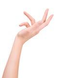 Женский жест рукой Стоковая Фотография