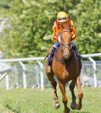 Женский жокей ехать лошадь гонки коричневого галопа аравийская Стоковые Фото