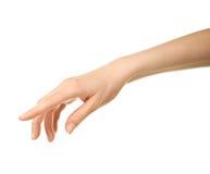 Женский кавказский изолированный жест рукой Стоковые Фотографии RF