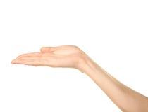 Женский кавказский изолированный жест рукой Стоковое Фото