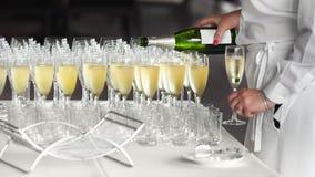 Женский кельнер лить холодное шампанское в стеклах стоковые изображения