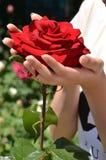 женский красный цвет рук поднял Стоковое фото RF