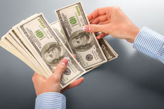 Женский клерк подсчитывая доллары Стоковая Фотография