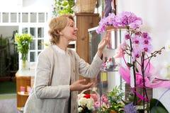 Женский клиент выбирая в горшке орхидею Стоковое фото RF