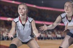 Женский профессиональный волейболист на волейбольном поле Стоковые Фото