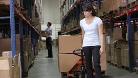 Женский работник вытягивая паллет в складе сток-видео