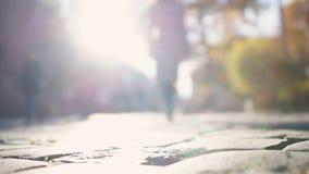 Женский силуэт загоренный с солнцем осени, идя от камеры, женственность акции видеоматериалы