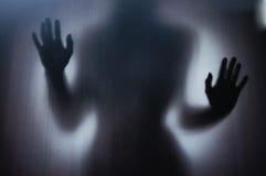 женский силуэт Стоковое Изображение RF