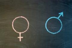Женский символ рода равн к мужской концепции рода Стоковое Изображение RF