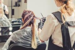 Женский стилизатор прикладывая краску к волосам клиентов стоковое фото