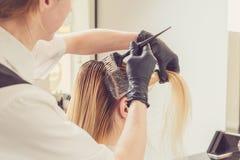 Женский стилизатор прикладывая краску к волосам клиентов стоковое фото rf