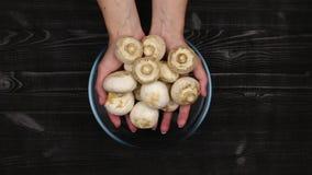 Женский стог рук слез грибы в прозрачном стеклянном шаре для резать как часть процесса подготовки свежих champignons видеоматериал