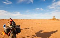 женский турист Стоковые Изображения RF