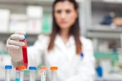 Женский ученый работая в лаборатории стоковые фотографии rf