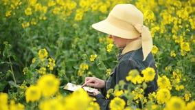 Женский фермер используя планшет цифров в рапсе семени масличной культуры культивировал аграрное поле контролируя рост заводов сток-видео